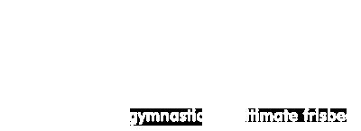 acro gymnastics icon